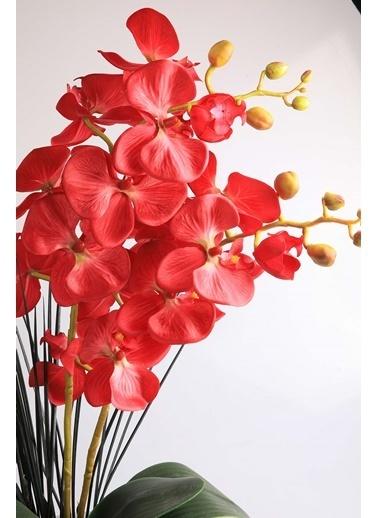 Kibrithane Çiçek Yapay Çiçek Metal Saksı Kırmızı Kumaş Orkide Kc00200801 Renkli